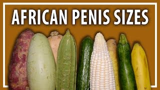 Average African Penis Sizes