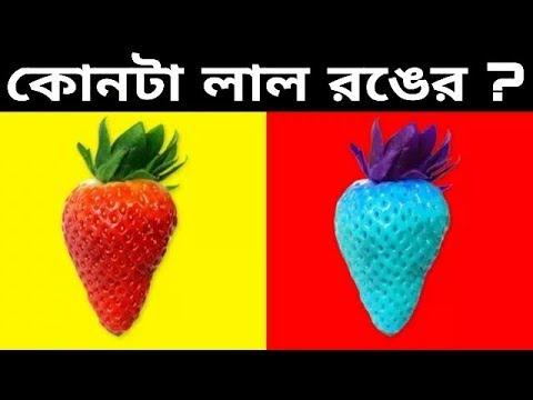 Xxx Mp4 মগজ পরীক্ষা। বাংলা Dhadha Riddles In Bengali Puzzle Bangla Top 5 Riddles Bagforon 3gp Sex