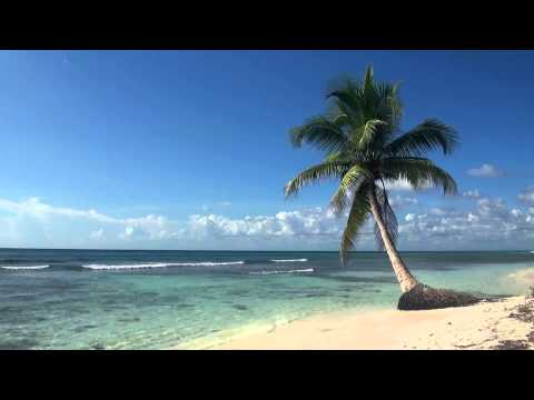 ♥♥ Relaxing 3 Hour Video of Tropical Beach with Blue Sky White Sand and Palm Tree