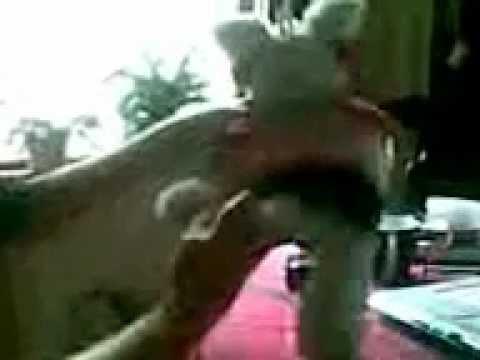 Xxx Mp4 Video001 3gp Ellie Dog S Sexy Milkshake Dance 3gp Sex