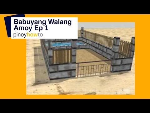 How to Raise Pigs Baboyang walang amoy or Odorless Pigpen Episode 1