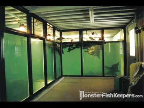 50000 15000 Gallon Monster Tanks MonsterFishkeepers