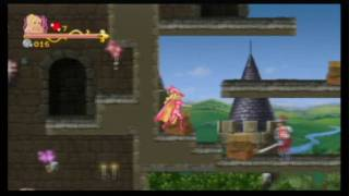 Barbie and The Three Musketeers Review (Wii)