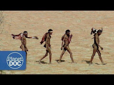 Xxx Mp4 Kalahari Bushmen African Tribes 3gp Sex