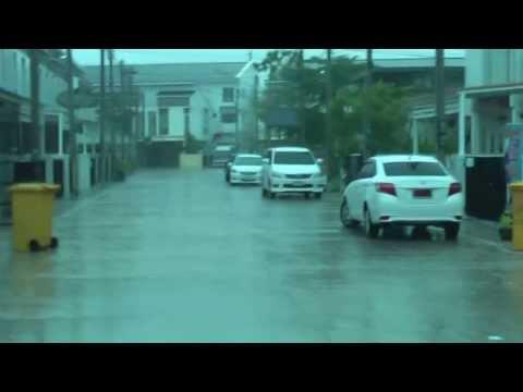 Monsoon rain in Pak Pun, Nakhon Si Thammarat