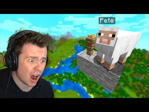 My Friend HID My Pet Sheep HERE In Minecraft