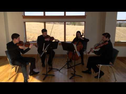 Eleanor Rigby arranged for String Quartet