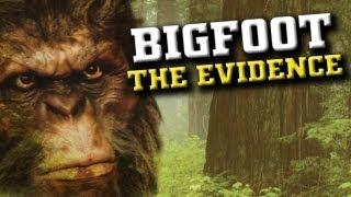 BIGFOOT THE EVIDENCE: Wild Man, Bigfoot Sasquatch Tracks and Prints, Video and MORE - FREE MOVIE