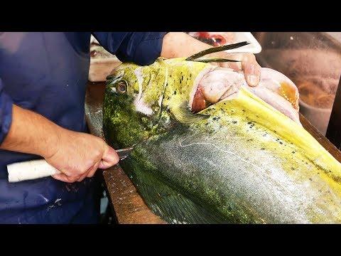 Xxx Mp4 Japanese Street Food GIANT MAHI MAHI FISH Japan Seafood 3gp Sex