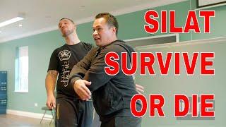 SURVIVE OR DIE SILAT