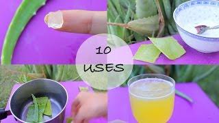 10 ways I use Aloe Vera! - Love this stuff!!