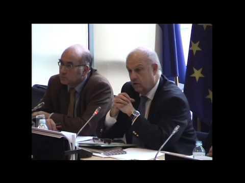 Présentation rapport directive concession