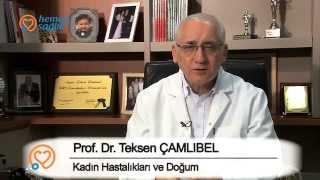 Prof. Dr. Teksen Çamlıbel - Kaç Aşılama Denemesinden Sonra Tüp Bebek Yapılmalıdır?