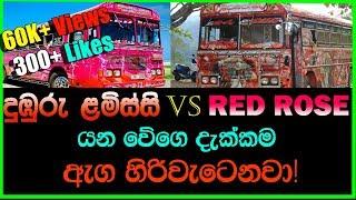 Dumburu Lamissi Bus & Red Rose Bus Highest Speed Record | Dumburu lamissi VS Red Rose