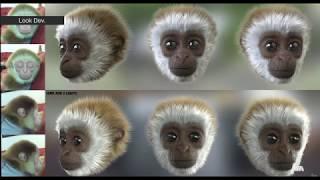 Visual Effects Breakdown -Monky