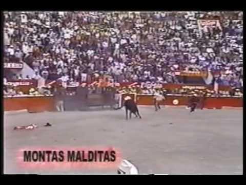 MONTAS DE TOROS DE PURA MUERTE