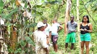 historia de ze do brejo em Gandu BA
