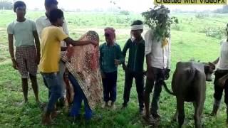 Shadi Comedy Video Song
