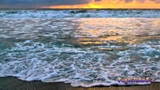 Pagol Tor Jonnore   Nancy   Bangla New Song HD]   YouTube