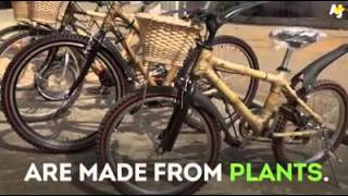Eco friendly bicycle frm bamboo