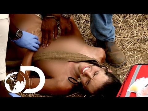 Xxx Mp4 Most Terrifying Moments Naked And Afraid XL 3gp Sex