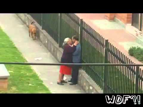 La Abuela Violadora What Da Faq Show