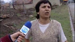 Млад меринджей - Съдебен спор - Жоро Игнатов