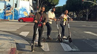 Bird Electric Scooters in Santa Monica? They