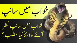 Khuab Main Sanp Dekhna Kesa Hai / خواب میں سانپ دیکھنا کیسا ہے