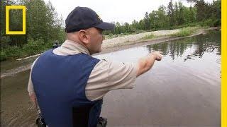 Protecting Alaska's Salmon | National Geographic