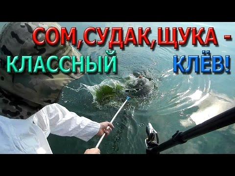 советы рыбалки от антоновича