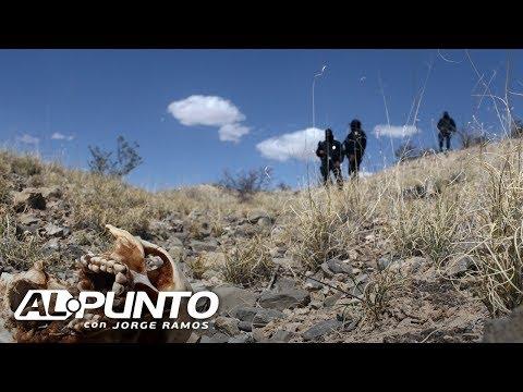 Reporte denuncia la existencia de 390 fosas clandestinas en México. ¿Quién es responsable?
