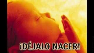 Nek - En Ti No al aborto