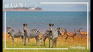 Teaser reportage TV Zone Interdite:  Croisière Safari Afrique Australe | CroisiEurope