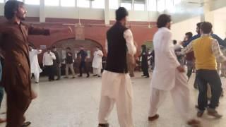 New Pashto attan song at quaid e azam university 2016 by pashtun students council quaid e azam unive