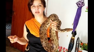 Rabi Pirzada playing with her friend snake