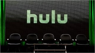 Hulu CEO: We can get as many subscribers as Netflix