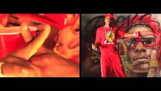 Plies - Anything 4 My Niggas (Official Video)