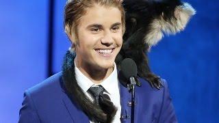 Kevin Hart, Justin Bieber, Martha Stewart, Natasha Leggero   001 ✪ Comedy Stand Up 2016