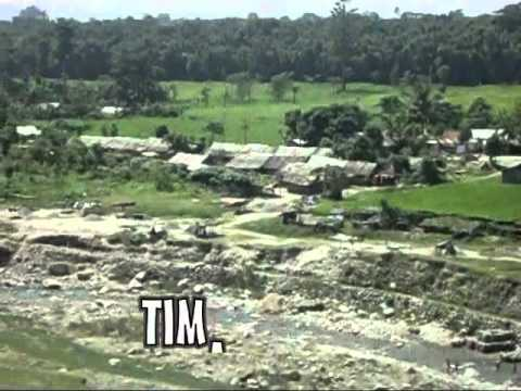 history of timai