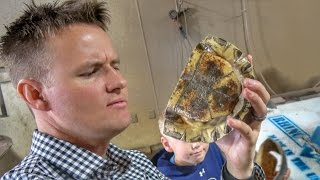 What's inside a Turtle Shell?