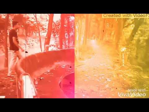 Xxx Mp4 New Bangla Xxx Video 3gp Sex