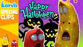 [Official] Larva's Creepy Halloween Recipe