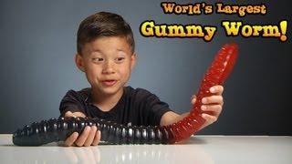 WORLD'S LARGEST GUMMY WORM Vs. KID!