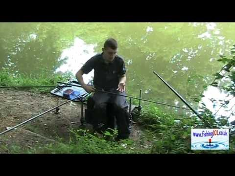 Catching Commercial Carp down the Edge