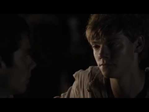 Newtmas You love him don t you