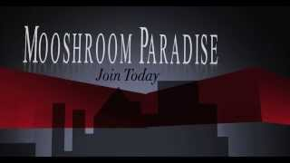 Mooshroom Paradise - A Friendly 1.8 UK Server