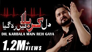 DIL KARBALA MAIN REH GAYA   New HD Noha 2018 2019/1440   Syed Raza Abbas Zaidi Nohay 2019