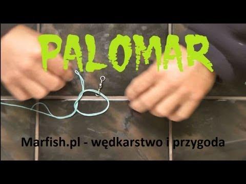 Palomar - węzeł wędkarski
