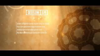 Geeflow - 571
